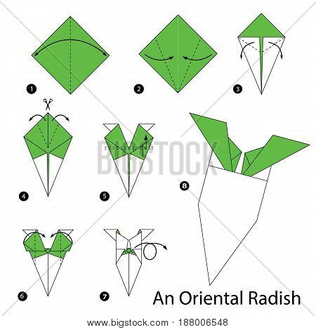 step by step instructions how to make origami An Oriental Radish.