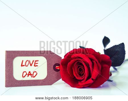 Father's day concept. LOVE DAD message with red rose on white background