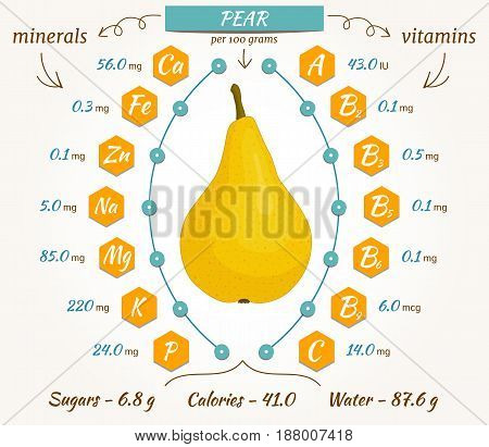 Pear infographics nutrition facts calories and analysis. The content of minerals and vitamins in pear. Vector illustration.