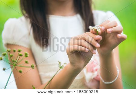 Little girl holding and playing with a flower in the field.