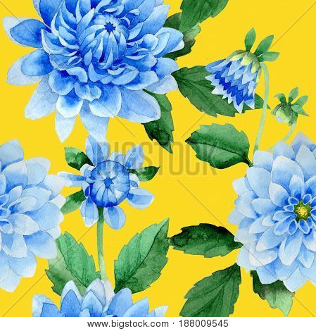 Wildflower dahila flower patern in a watercolor style isolated. Full name of the plant: blue dahila. Aquarelle wild flower for background, texture, wrapper pattern, frame or border.
