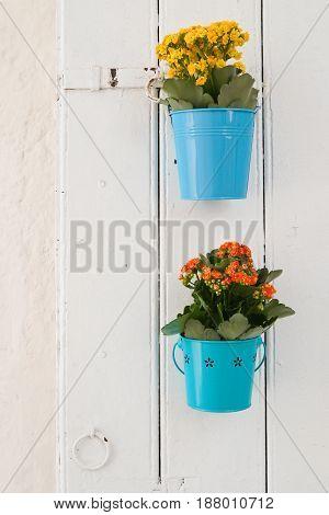 Flowerpots on wooden door. Cisternino. Puglia. Italy.