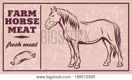 Label of meat products. Horsemeat. Vector illustration