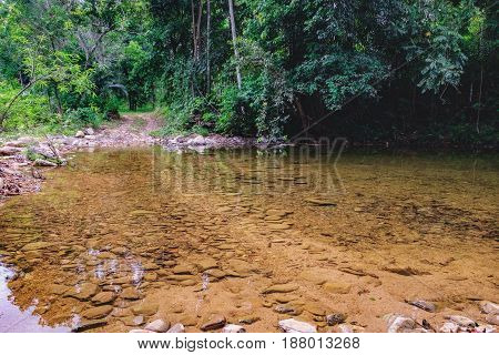Thai dark tropical forest and small mountain river in Mu Koh Chang National Park, Chang island, Thailand. Path to the Khlong Phlu waterfall. Natural background. Soft Focus.