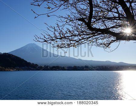 Mount Fuji With Lake Kawaguchi In Japan