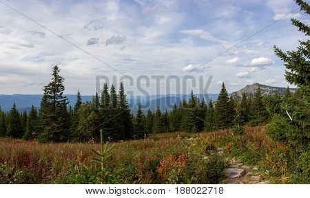 The Nature Of The Southern Urals. The Mountains. Iremel. Summer In The Mountains In The Southern Ura