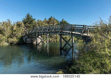 Wooden bridge in the Olonne swamp (Vendee, France)