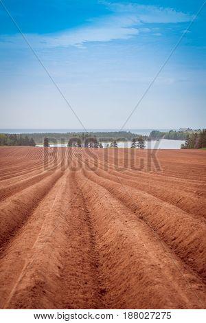 Farmer's field in Prince Edward Island, Canada