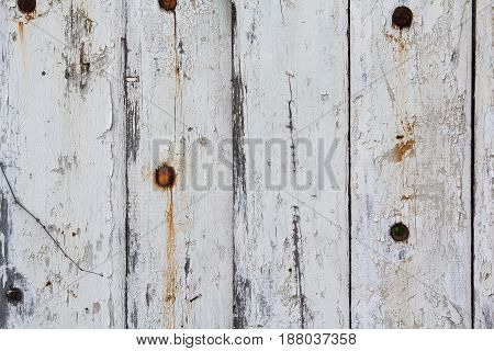 Old fence painted in white paint. Backgrounds and textures