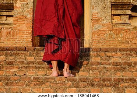 Buddhist Monk At The Temple