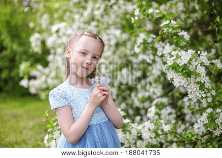 Cute little girl in dress in blooming apple tree garden at spring