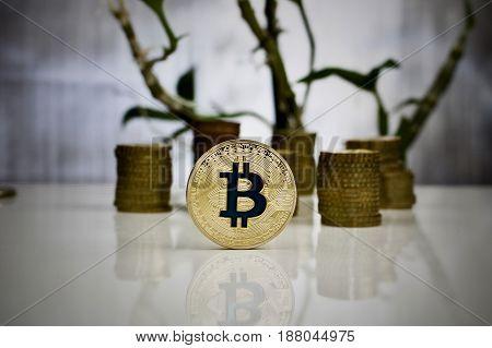 Gold Bitcoin Coin Concept