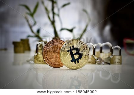Brass And Gold Bitcoin Coins