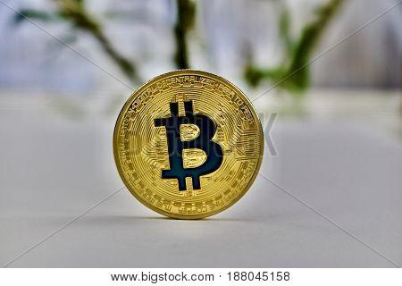 Gold Bitcoin Coin - Blue Sign