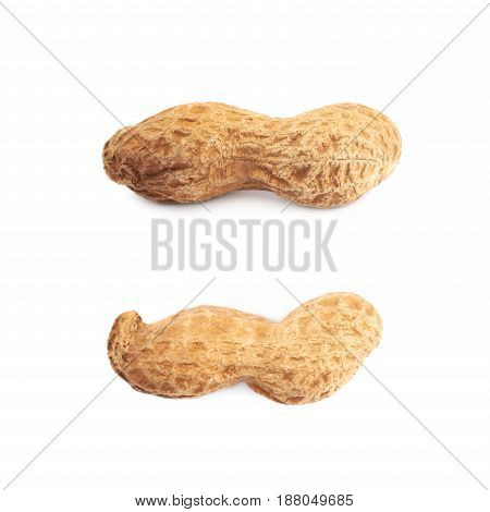Single peanut in a shell isolated over the white background, set of two different foreshortenings
