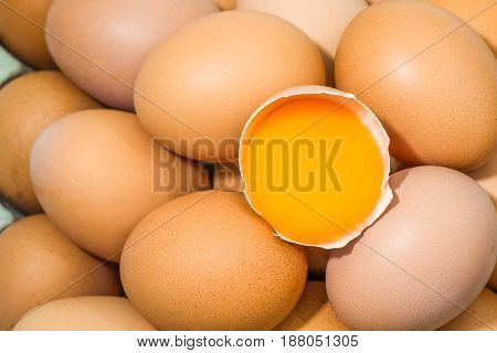 close up top view pile of eggs