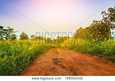 Dirt Way To The Forest Surrounding With Green Plant Over The Blue Sky At Kao Kor, Thailand