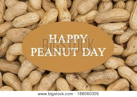 Celebrating peanut day Raw peanuts in shells background with text Happy Peanut Day on a card