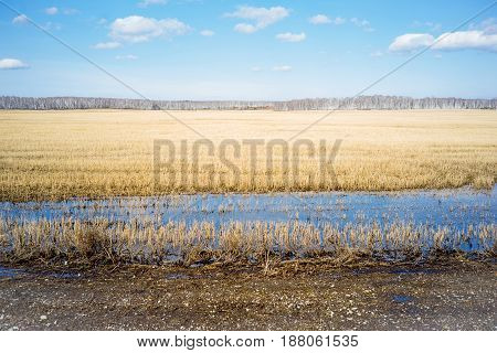 Landscape view of a field and a river
