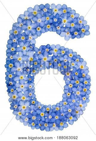 Arabic Numeral 6, Six, , From Blue Forget-me-not Flowers