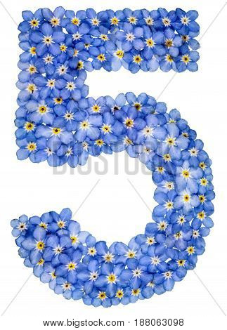 Arabic Numeral 5, Five, , From Blue Forget-me-not Flowers