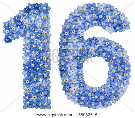 Arabic Numeral 16, Sixteen, From Blue Forget-me-not Flowers