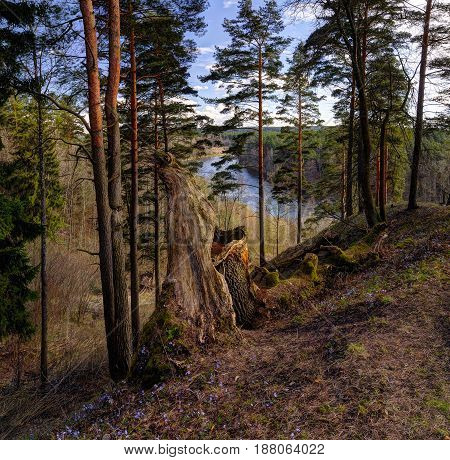 Neris regional park in spring season. Hillfort - Naujoji Reva