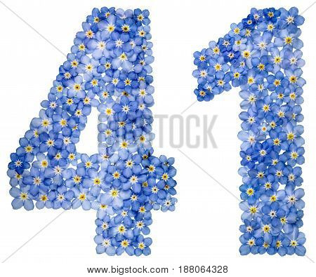 Arabic Numeral 41, Forty One, From Blue Forget-me-not Flowers