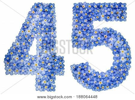 Arabic Numeral 45, Forty Five, From Blue Forget-me-not Flowers