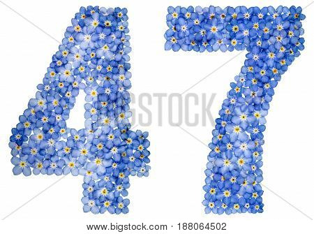 Arabic Numeral 47, Forty Seven, From Blue Forget-me-not Flowers