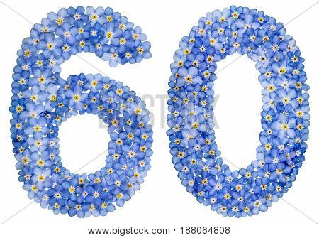 Arabic Numeral 60, Sixty, From Blue Forget-me-not Flowers