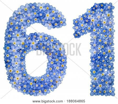 Arabic Numeral 61, Sixty One, From Blue Forget-me-not Flowers