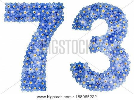 Arabic Numeral 73, Seventy Three, From Blue Forget-me-not Flowers