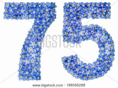 Arabic Numeral 75, Seventy Five, From Blue Forget-me-not Flowers
