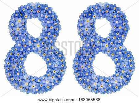 Arabic Numeral 88, Eighty Eight, From Blue Forget-me-not Flowers