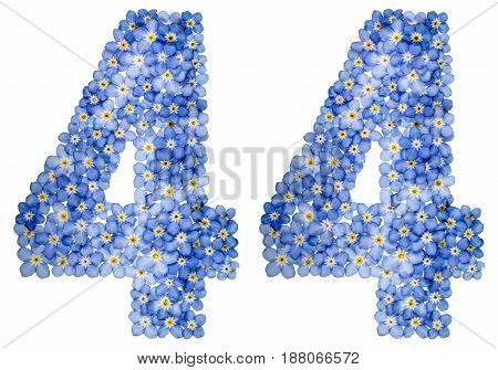 Arabic Numeral 44, Forty Four, From Blue Forget-me-not Flowers