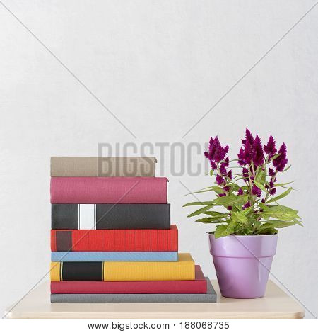 stack of new colorful books and flowers in a pot on the table