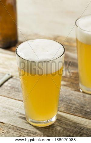 Light Refreshing Summer Craft Beer
