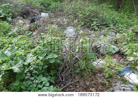 Environmental problem. Garbage dump in the forest.