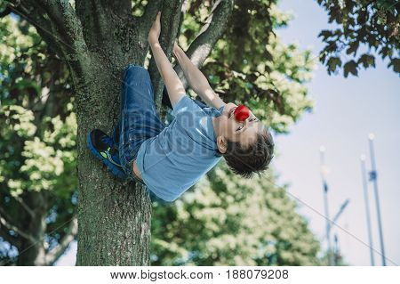 Boy with a red nose climbs a tree. The child having fun and naughty outdoors. boy clings to a tree branch and threw his head back