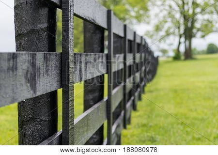 Looking Down the Line of Black Horse Fence with focus on front post