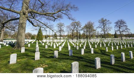 Impressive view over Arlington Cemetery in Washington - WASHINGTON - DISTRICT OF COLUMBIA