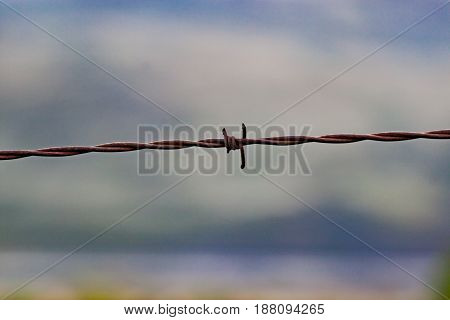 Isolated barbed wire fence against blurred background