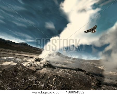 The eagle flies through the ejection of steam from the geyser. Valley of Geysers in the Atacama Desert Chile