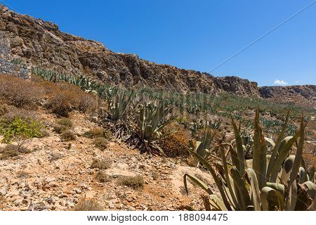 The natural landscape of the island Imeri Gramvousa the Mediterranean Sea. Crete. Greece.