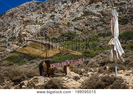 The donkey taxi. Island of Crete. Greece.