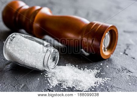 Spices set with salt and saltcellar for cooking on stone kitchen table background