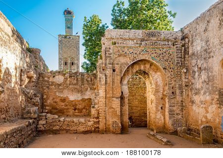 In the ruins of mosque in ancient Chellah near Rabat - Morocco