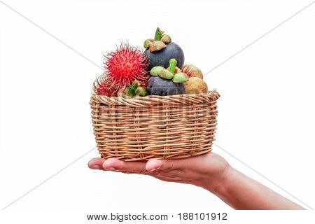 Hands holding a basket of fresh fruit on white background