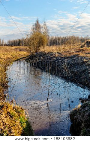 Sunny landscape with spring creek after frost